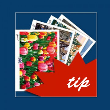 Postcards Amsterdam Holland. 20 postcards.