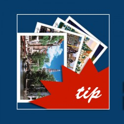 Postcards Amsterdam. 15 postcards.