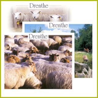 Drenthe postcards serie