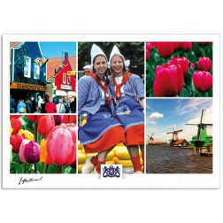 h17-001 Dutch wooden houses colorful tulips cheese market windmills