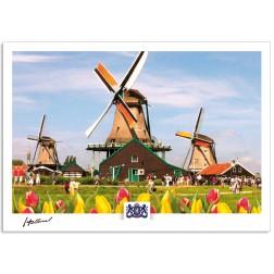 h17-003 ansichtkaart Holland drie bekende molens aan de Zaanse Schans