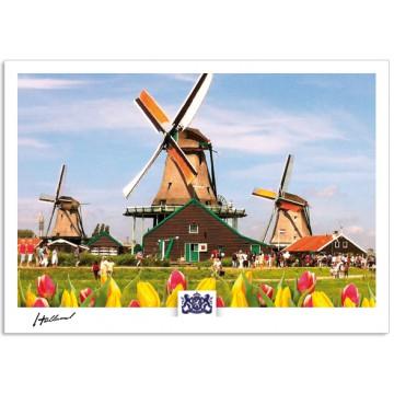 h17-003 Windmills Zaanse Schans