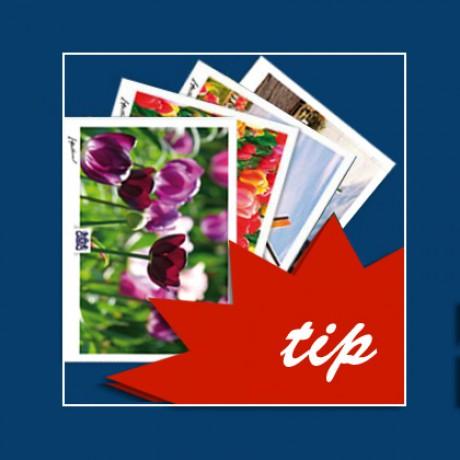 Postcards Holland. 12 postcards.