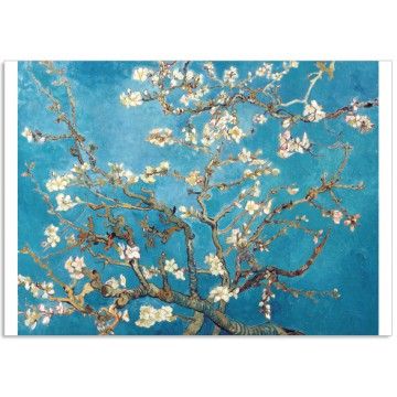 Art12 postcard Almond blossom Vincent van Gogh