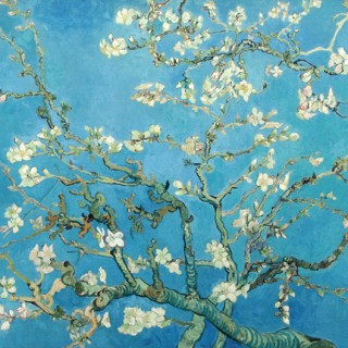 Art vk12 card with envelop. Almond blossom. Vincent van Gogh.