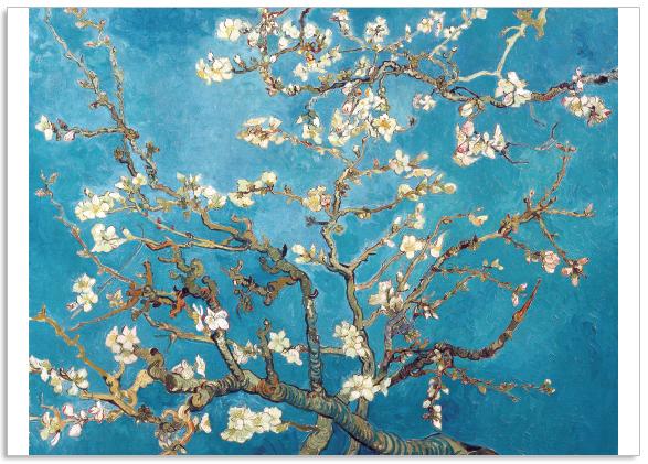 Ansichtkaart Vincent van Gogh Amandelbloesem